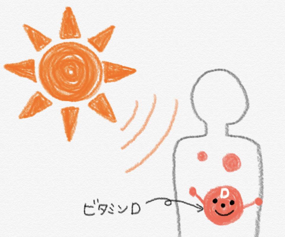 太陽ビタミンD